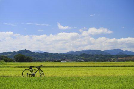 里山ポタリング(金毘羅ルート)